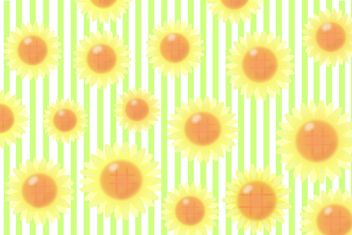 Sunflower · Stripe (yellow green)