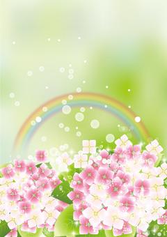 彩虹&繡球16