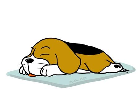Beagle sleeping at the mat Make a beagle dog