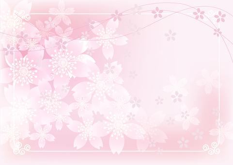 Sakura & Sakura 11