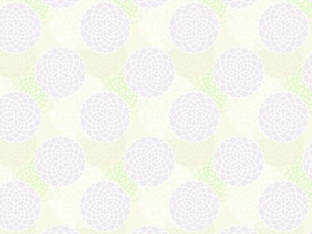 Chrysanthemum pattern 3 _ yellow