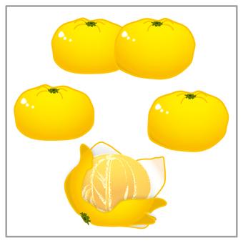 Mandarin orange (with peeling crust)