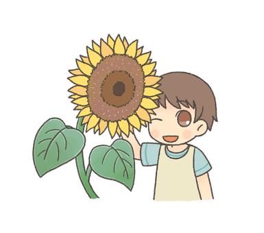 Sunflowers and girls