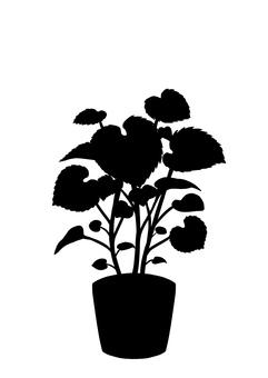 Vegetable seedling silhouette