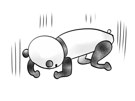 좌절하는 팬더