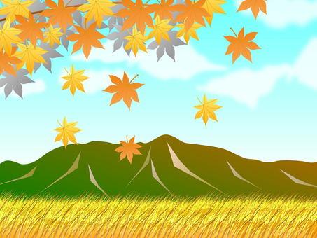 鄉村景觀在秋天