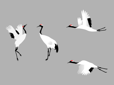 Cranberry crane material set