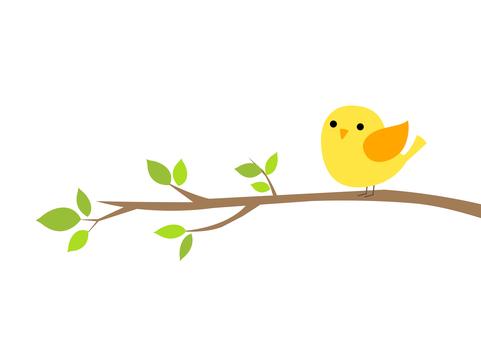 Mr. 小鳥 6