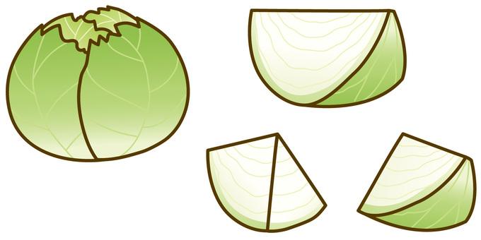 Cut cabbage