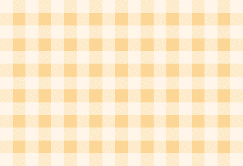 Gingham check 03