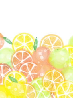 Citrus Frame / Vertical Bottom