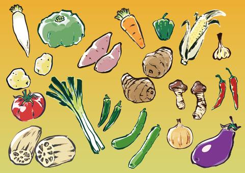 手描き野菜セット(彩色)