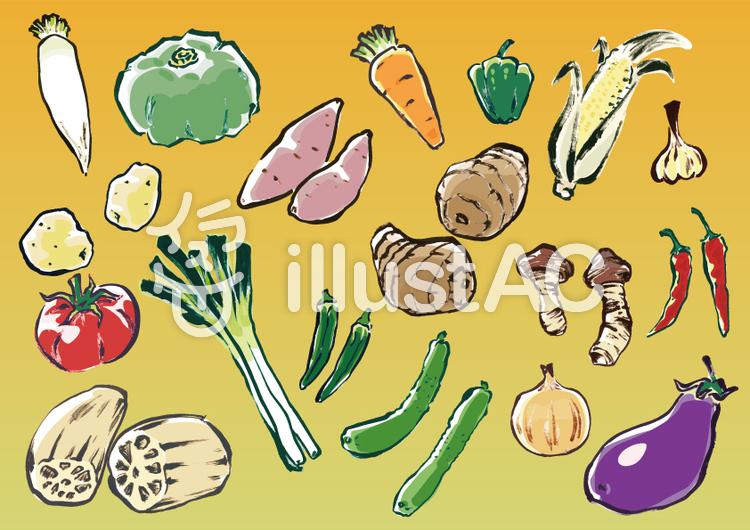 手描き野菜セット(彩色)のイラスト