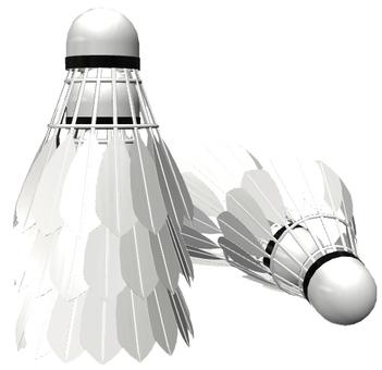 Shuttle Badminton