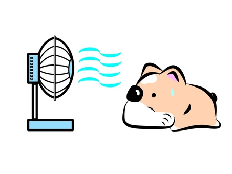 Summer, fan and dog