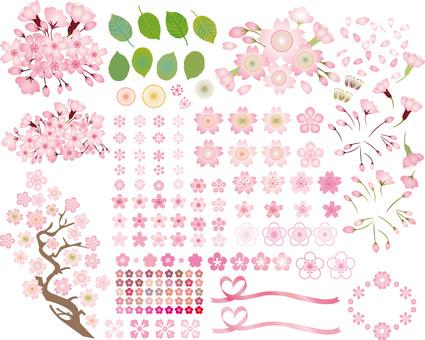 Spring flower cherry tree Sakura icon set Pink color