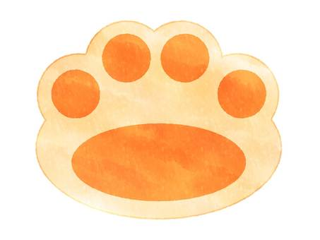 Cat dog footprints watercolor style