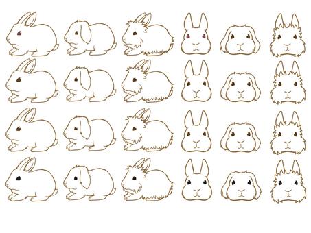 Rabbit set line drawing