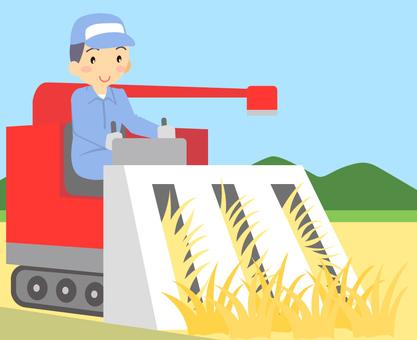 Autumn / Rice Cutting