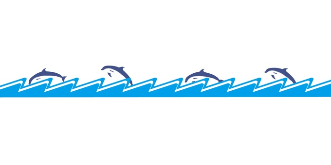 Horizon line _ Dolphin