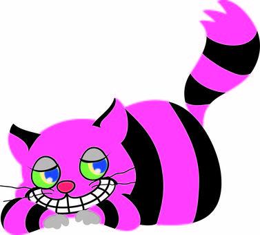 Chasha cat