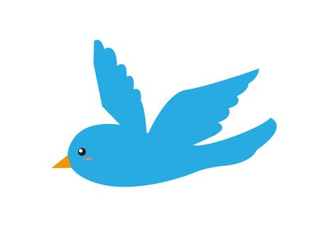 Bird little bird blue bird