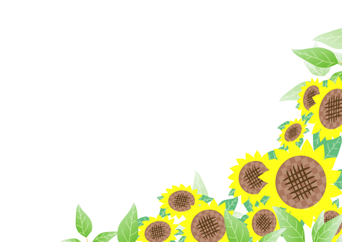 Green and sunflower