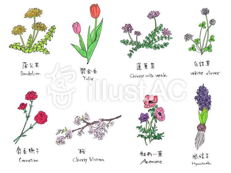 春の花イラスト No 1040449無料イラストならイラストac