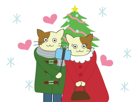 Cat couple's Christmas date