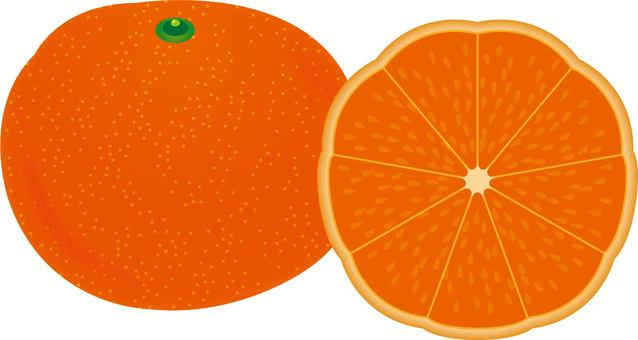 Mandarin orange - type F -
