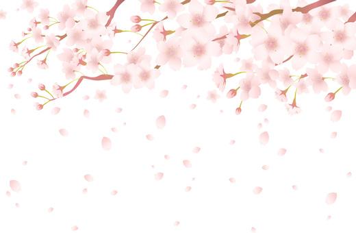 Cherry tree frame 201706