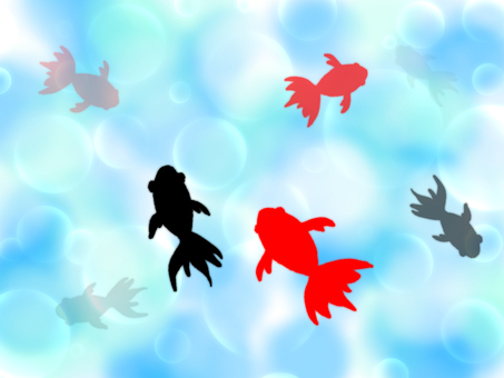 Goldfish and water surface wallpaper