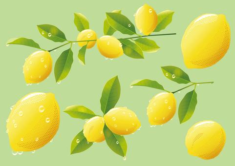 Drops of water and lemon