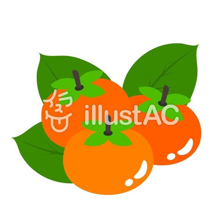 柿収穫イラスト No 65003無料イラストならイラストac