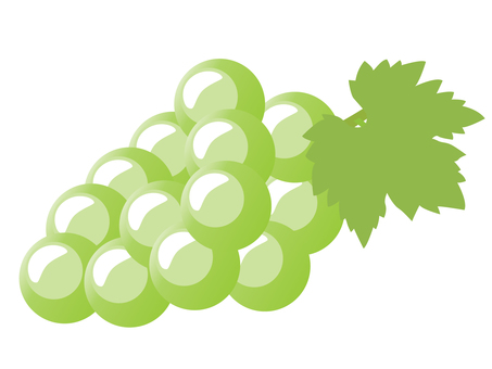Grape 01 yellow green