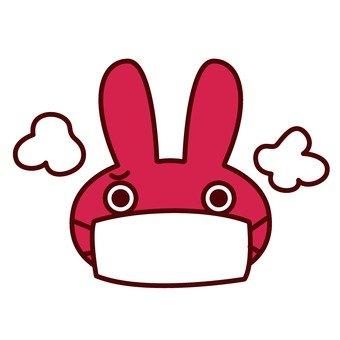 Masked rabbits