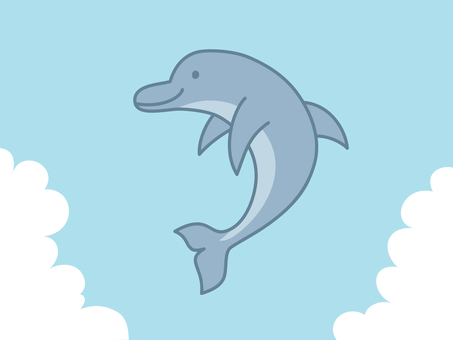 Dolphins to jump 2