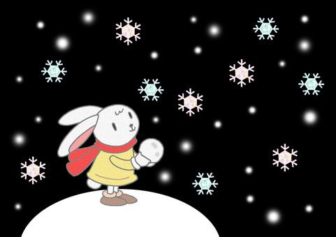 Snow rabbit. 3