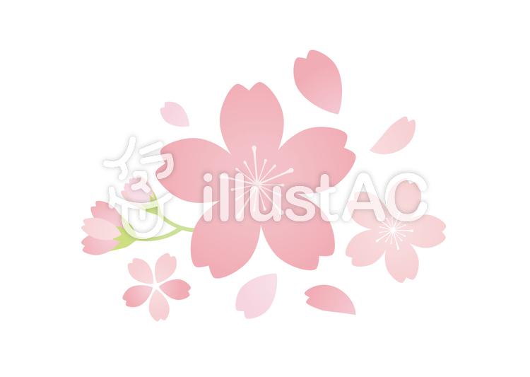 桜のクリップアート01のイラスト