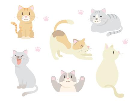 고양이 여러가지 _01
