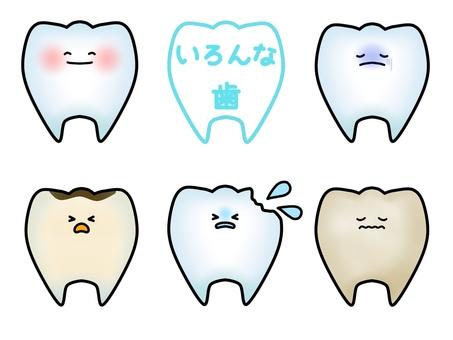 여러 치아의 캐릭터 (윤곽선 있음)