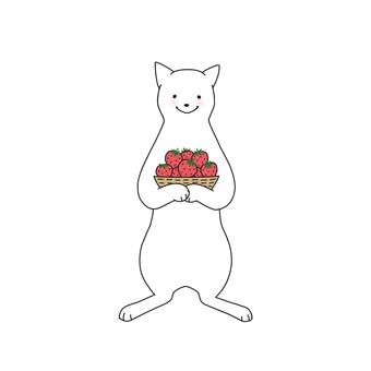 고양이와 딸기