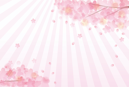 Sakura Sakura 17 - 24