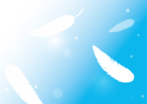 Sky and feathers