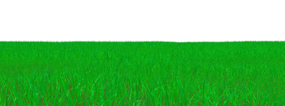 Prairie _004