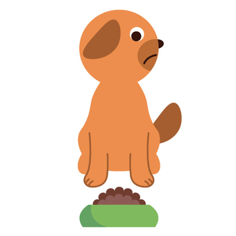 Image of a dog not eating pet food