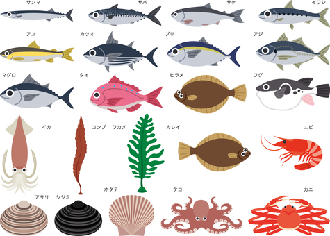 Seafood Seafood Fish Set