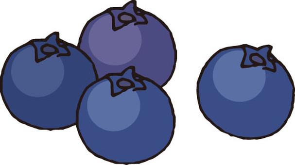 Fruit (blueberry)