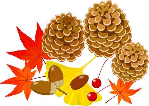 Fall of fall