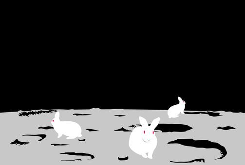 Rabbit moon postcard